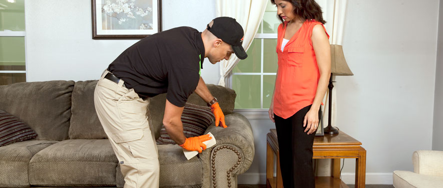 Leawood, KS carpet upholstery cleaning