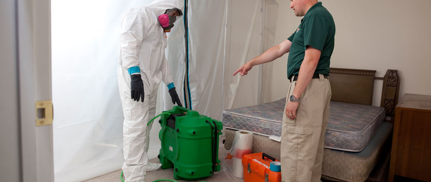 Leawood, KS mold removal process